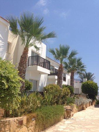 Akti Beach Village Resort: facade des logements à cotès de la piscine zen