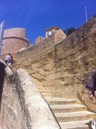 The Citadel: Stunning