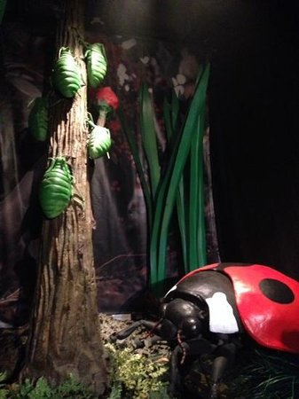 Bournemouth International Centre: Creepy Crawlie Exhibition
