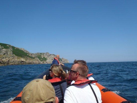 Ilfracombe Sea Safari: Lundy Island trip