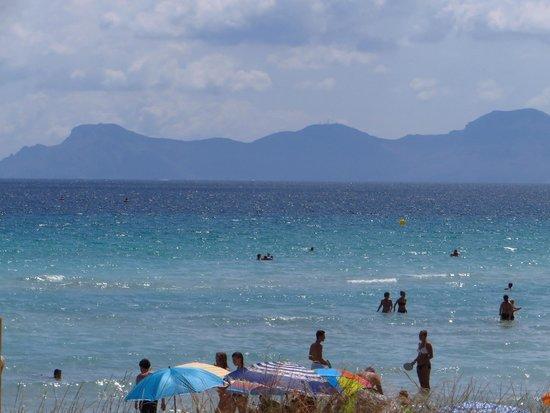 Grupotel Maritimo: The beach in Alcudia
