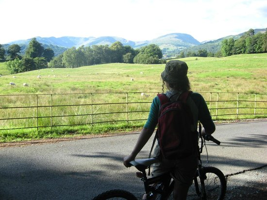 Low Wray National Trust Campsite: On our way home from the lake