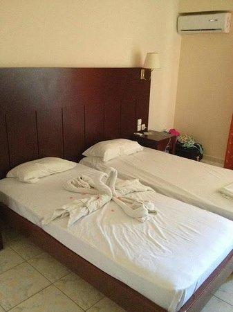 Apollon Hotel : room