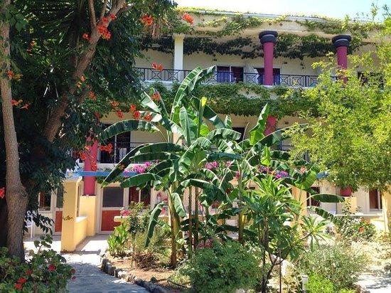 Apollon Hotel : rooms from the garden