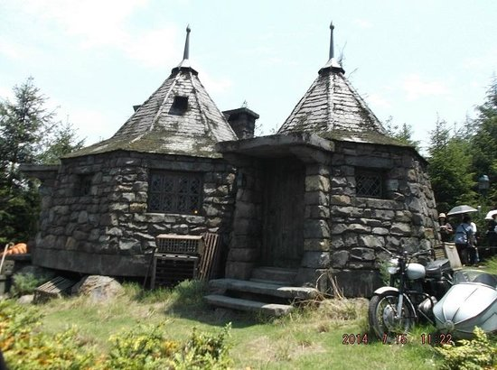 Caba a de hagrid estudios universal japon picture of What house was hagrid in