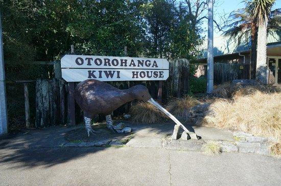Otorohanga Kiwi House & Native Bird Park: kiwi house