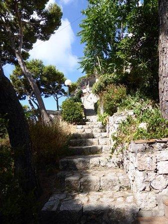Treppen zur Villa Krupp - Foto van Villa Krupp, Capri ...