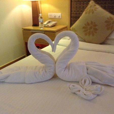 Berjaya Langkawi Resort - Malaysia : Beautiful pair of swans...