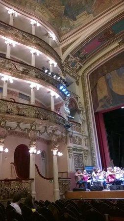Théâtre Amazonas : interno del teatro
