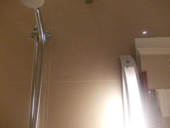 Renaissance Brussels Hotel: proximité de la douchette avec la lampe et de la vasque
