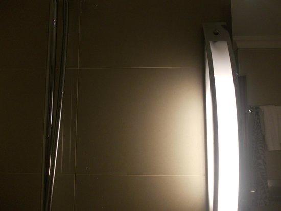 Renaissance Brussels Hotel: douche dans la salle de bain