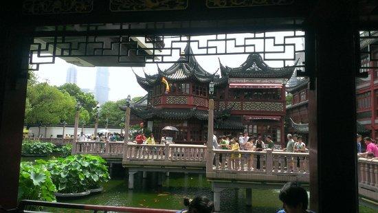 Nanxiang Mantou Dian (YuYuan) : 並んでいる時に撮りました