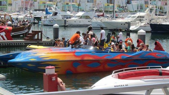 Vila Galé Cerro Alagoa : Trip to see the dolphins