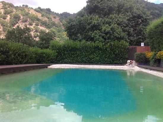 Agriturismo San Cataldo: piscina