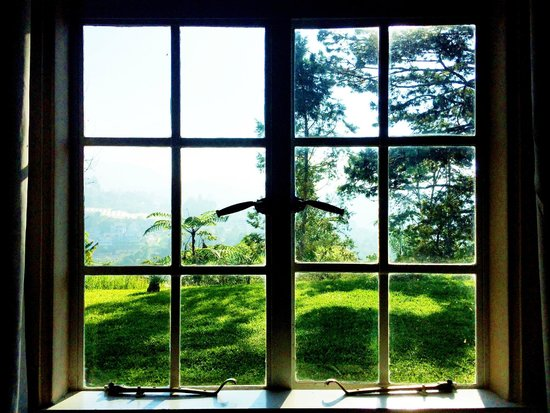 Hilltop Bungalow: woke up to beautiful morning rays and much greens