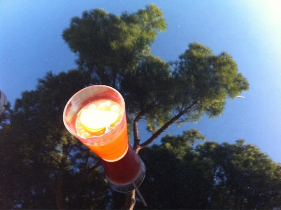 Les Pergamon Hotel: Coktail sur la terrasse
