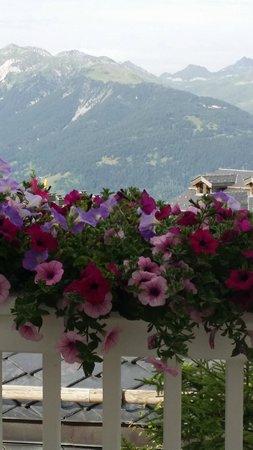 Le Chabichou : terrasse très fleurie