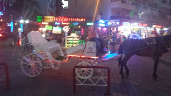 Semiz Apart Hotel: Horse and carridge ride which our children loved it was 50 lira though for 15 minutes ride round