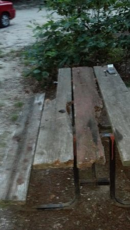 Sea Pines RV Resort & Campground: Our Picnic table they supplied