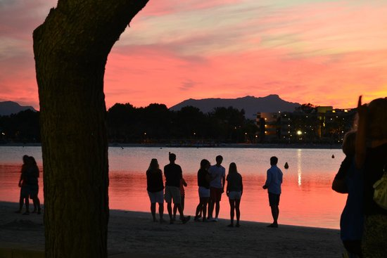 Aparthotel Ferrer Maristany : Another Sunset over Alcudia beach