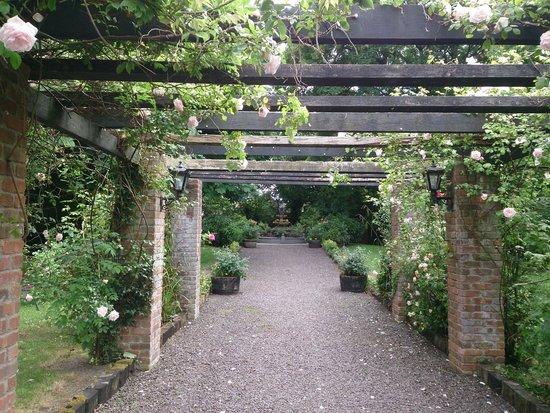 Meadowlands Hotel: Garden