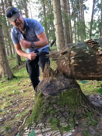 Wild Sweden - Day Tours: Beaver Safari July 2014 - Wildsweden