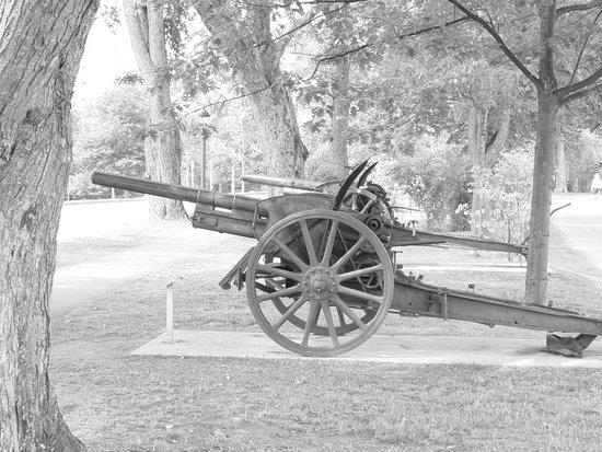 BEST WESTERN PLUS City Centre/Centre-Ville : Ancien canon dans un parc