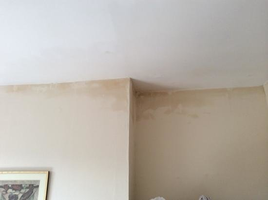 The Royal Hotel: Damp patches in room
