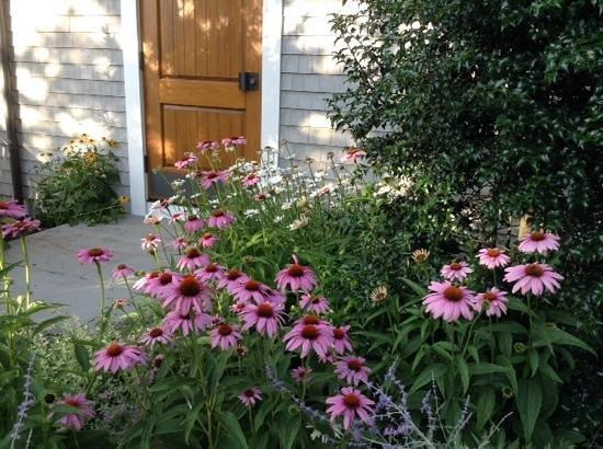 Marshside Restaurant: lovely plants abound!