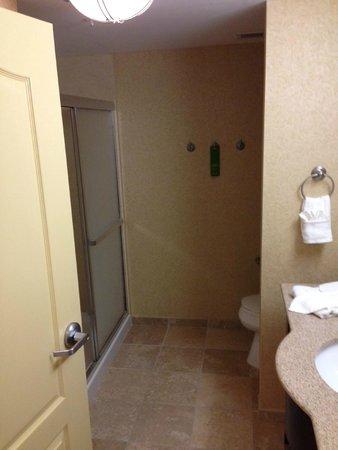 Hampton Inn & Suites Orlando - South Lake Buena Vista: Dreary Bathroom