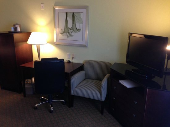 Hampton Inn & Suites Orlando - South Lake Buena Vista: Room