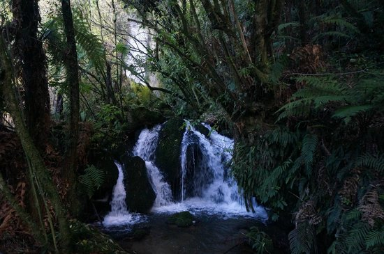 Buried Village of Te Wairoa: waterfall