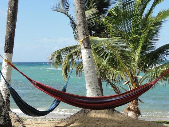 Caribe Playa Beach Hotel : The beach area closet to pool