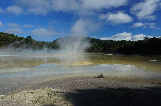 Wai-O-Tapu Thermal Wonderland: the champagne pool