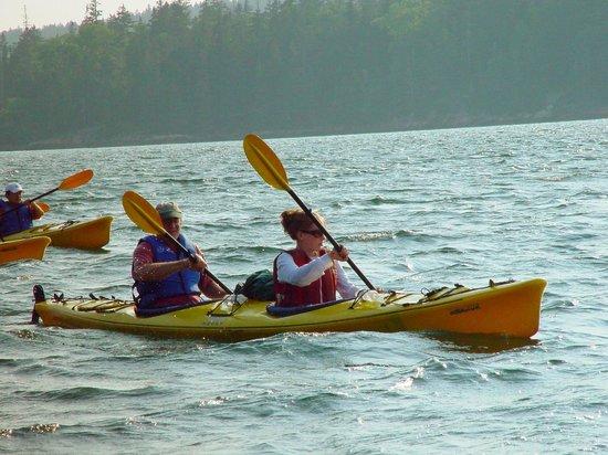National Park Sea Kayak Tours : Kayak