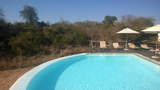 Kapama River Lodge: Piscine