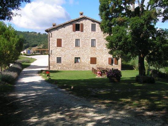 Agriturismo Santo Stefano: Rovigo 6