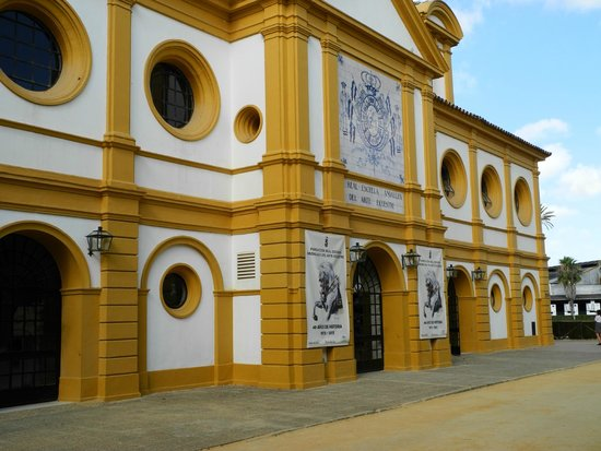 Fundación Real Escuela Andaluza del Arte Ecuestre : Die Dressurhalle