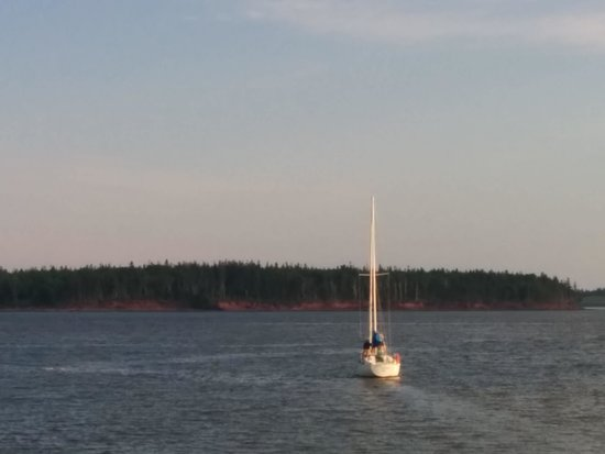 Loyalist Lakeview Resort Summerside: Au quai de l'autre côté de la rue, nous pouvons observer les bateaux qui partent à l'aventure