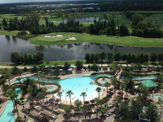 Hilton Orlando Bonnet Creek: Awesome Pool View