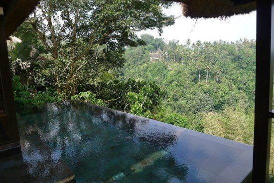 Hanging Gardens of Bali: Room Pool