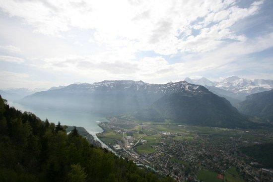Harder Kulm: Ausblick auf den Brienzersee