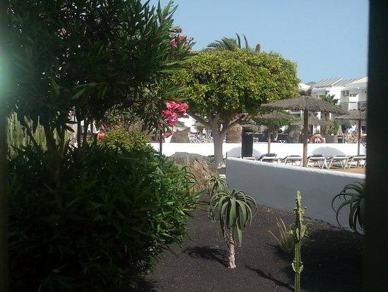 Hotel Floresta: jardins