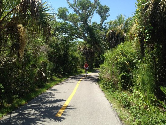 Ocean's Reach Condominiums: one of the many bicycle paths on the island