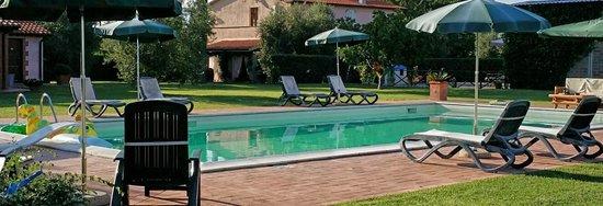 Agriturismo Il Puntoncino: la piscina