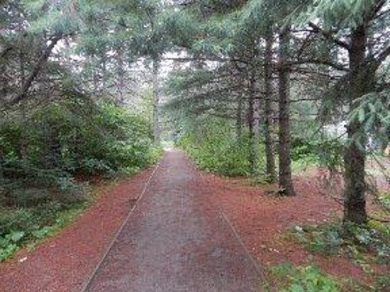Mew Lake Campground: Trail leading to showers