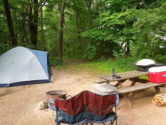 Dingmans Campground: Site 128 by the river