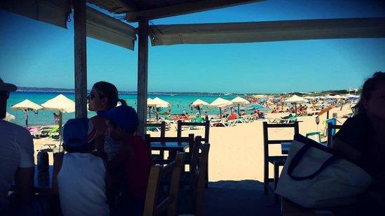 Insotel Club Maryland: spiaggia di fianco al villaggio