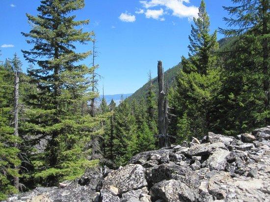 Bear Creek Trailhead: Bitterroot Valley below