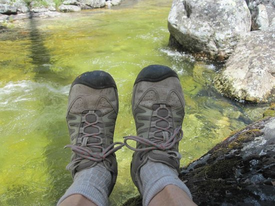 Bear Creek Trailhead : Relaxing by the pool of water with the brilliant green colors